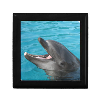 Dolphin Talk Jewelry Boxes