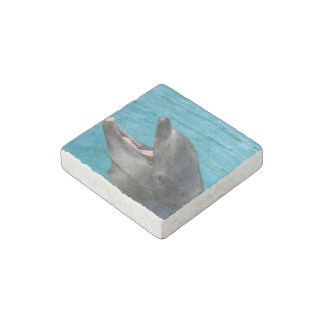 Dolphin Talk Stone Magnet