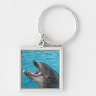 Dolphin Talk Keychains