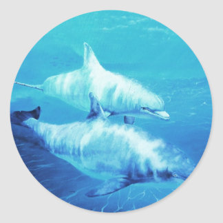 Dolphin Tee shirts and items Classic Round Sticker