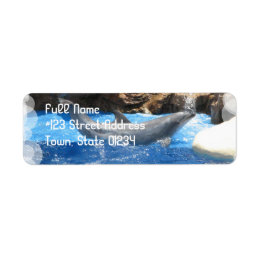 Dolphin Tricks Return Address Label