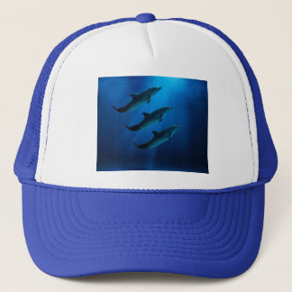 Dolphin Truckers Hat