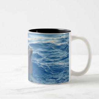 Dolphin Two-Tone Coffee Mug
