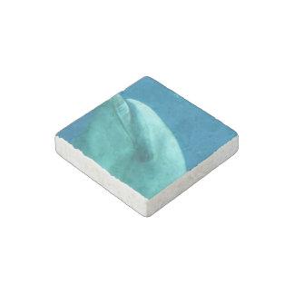 Dolphin Underwater Stone Magnet