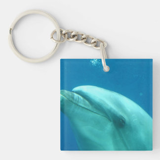 Dolphin Underwater Single-Sided Square Acrylic Keychain