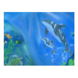 Dolphin underwater scene postcard