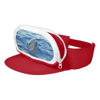 Dolphin Visor