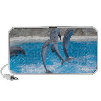 Dolphin Water Beach Tropical Paradise Island Fish Speaker System