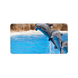 Dolphin Water Fish Beach Animal Party Destiny Personalized Address Label