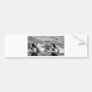 dolphin wave water tropical dive swim Aquatic Life Bumper Sticker