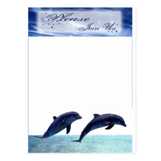 Dolphin Wedding Invitation Beach Wedding Reception Postcard