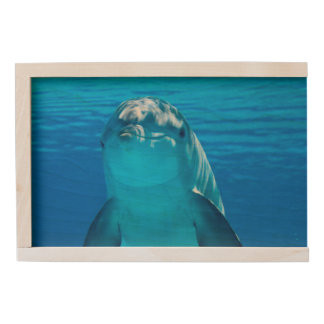 Dolphin Wooden Keepsake Box
