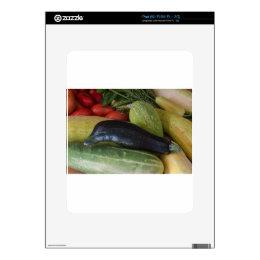 Dolphin Zucchini iPad Decal