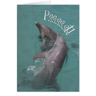 Dolphins2 Greeting Cards
