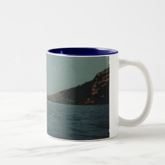 Dolphins 019 Two-Tone coffee mug
