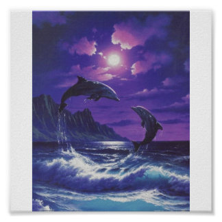 dolphins[1] poster