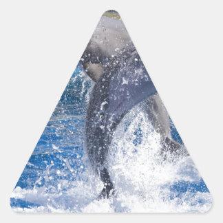 Dolphins 2 triangle sticker