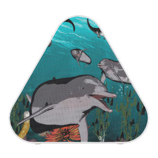 Dolphins and manta rays speaker