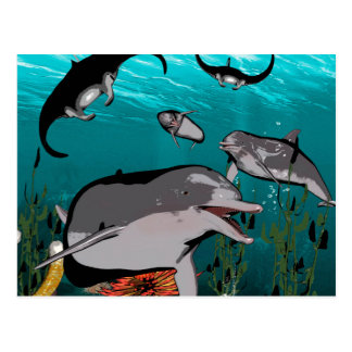 Dolphins and manta rays postcard