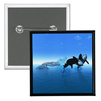 Dolphins and Orca's Button