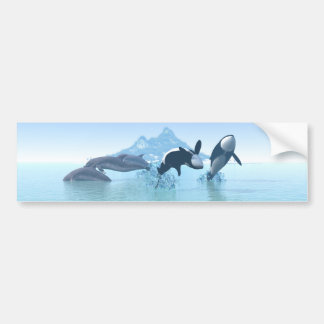 Dolphins and Orca's Car Bumper Sticker