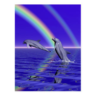 Dolphins and Rainbow Post Cards