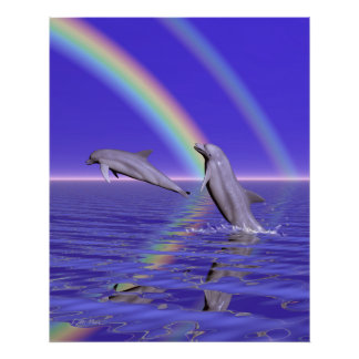Dolphins and Rainbow Poster