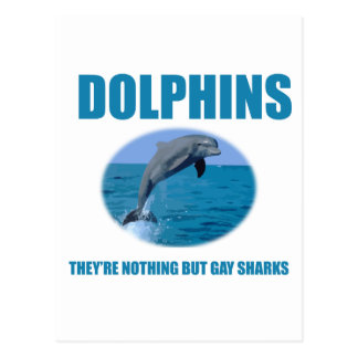 Dolphins are gay sharks postcard