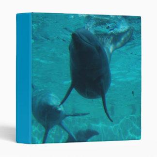 Dolphins at Play Binder
