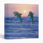 Dolphins at sunrise 3 ring binder