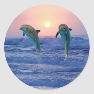 Dolphins at sunrise classic round sticker