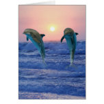 Dolphins at sunrise greeting cards