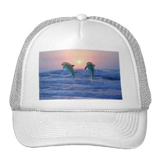 Dolphins at sunrise hat