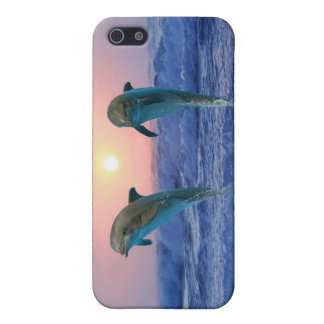 Dolphins at sunrise iPhone SE/5/5s cover