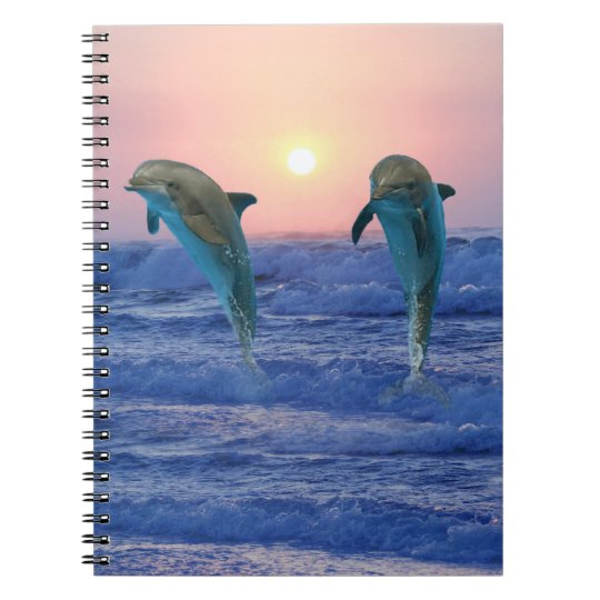 Dolphins at sunrise notebook