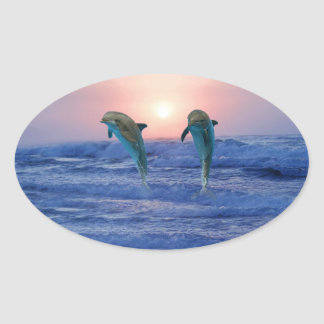 Dolphins at sunrise oval sticker