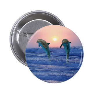 Dolphins at sunrise pinback button