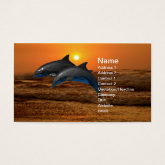 Dolphins at sunset business card