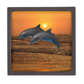 Dolphins at sunset gift box