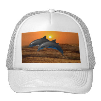 Dolphins at sunset hats