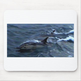 Dolphins at the boatside mouse pad