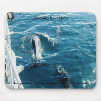 Dolphins Bowriding Mouse Pad