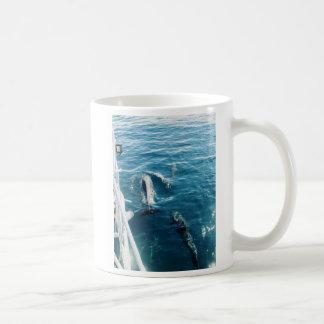Dolphins Bowriding Mug