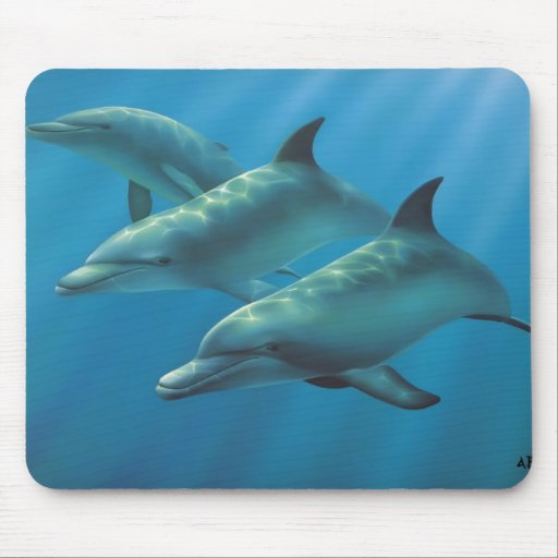 Dolphins by Andrew Patsalou Mouse Pad