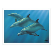 Dolphins by Andrew Patsalou Postcard