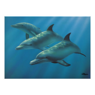 Dolphins by Andrew Patsalou Poster
