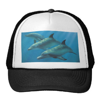Dolphins by Andrew Patsalou Trucker Hat