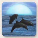 Dolphins by moonlight coaster