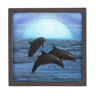 Dolphins by moonlight gift box