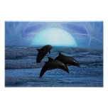 Dolphins by moonlight poster